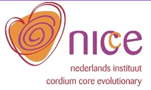 Dutch Core Energetics Institute (NICE)